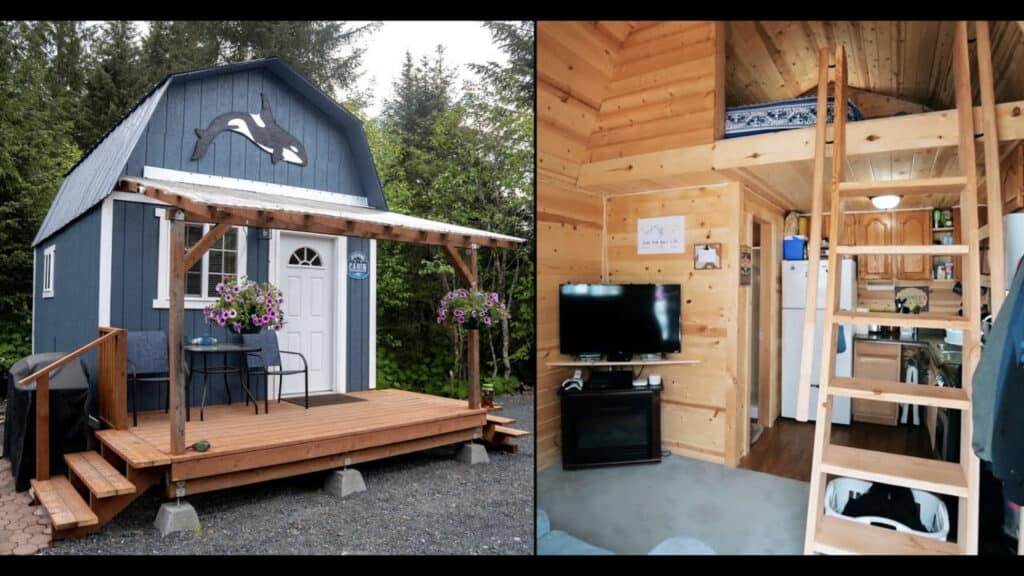Sheds you can live in